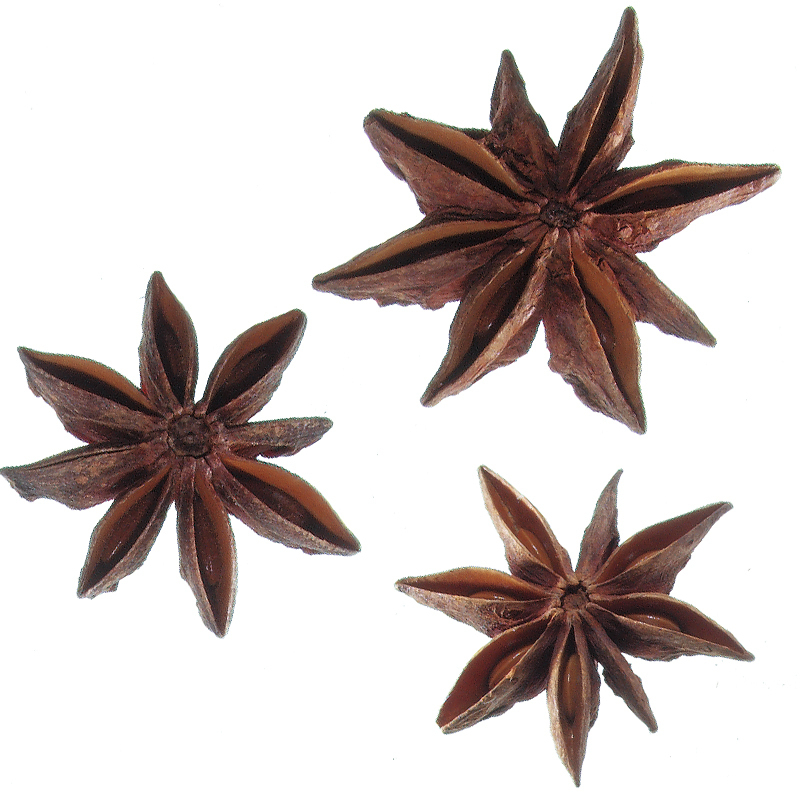 Star Aniseed whole, grade AA, organic