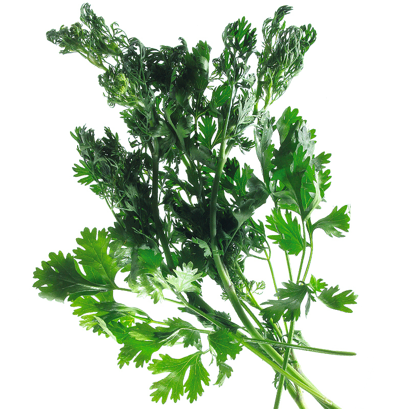 Coriander leaves 8g