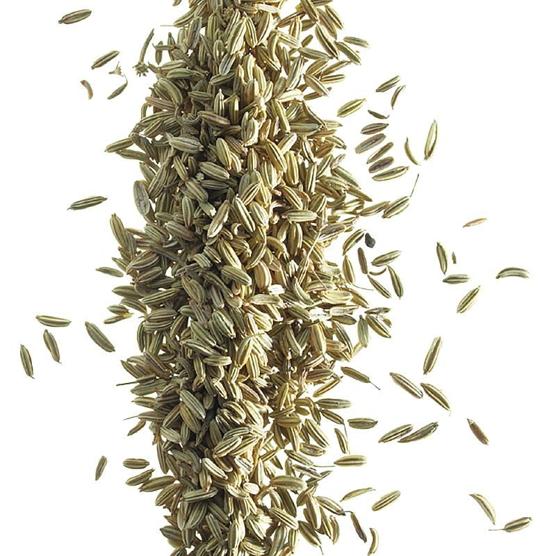 Fennel ground LowBAC