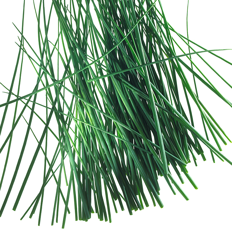 Chive rolls 1-3mm